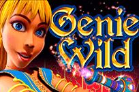Играть в казино Вулкан Удачи в Genie Wild