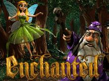 Автомат на деньги Enchanted